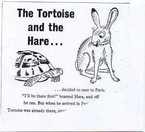 si_tortoise